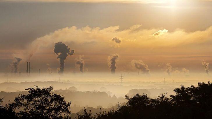 La electricidad producida con carbón se reduce más de un 60% en lo que va de año