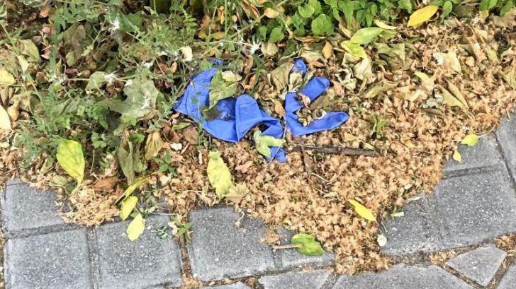 SEO/BirdLife y Ecoembes llaman a no tirar guantes y mascarillas al suelo durante el desconfinamiento