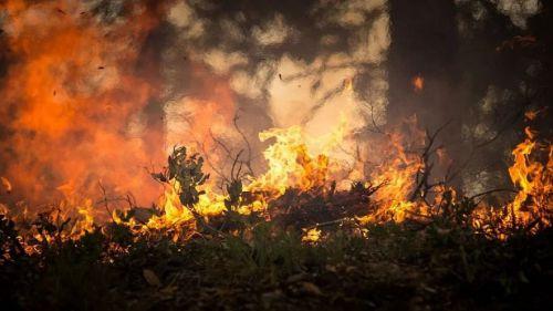 Greenpeace alerta de que el abandono de la España rural eleva el riesgo de grandes incendios
