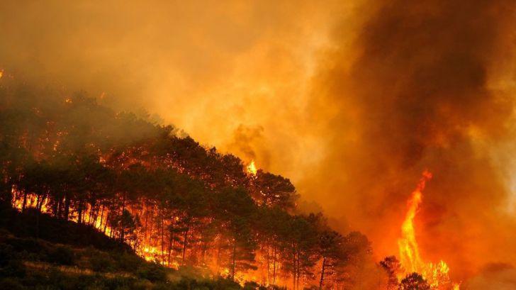 Un nuevo verano de incendios en varias regiones del planeta agudizará la emergencia climática