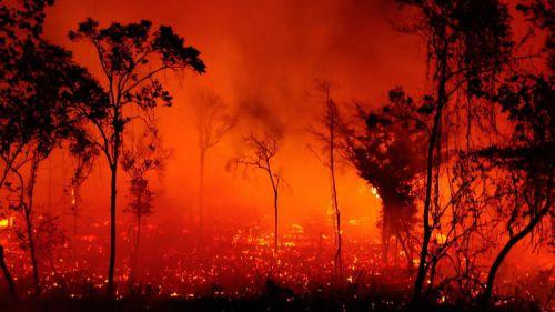El Pantanal bate su propio récord de incendios