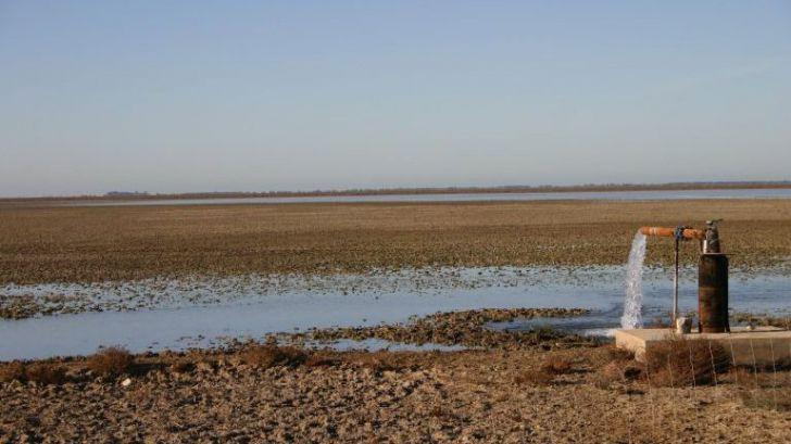 Solicitan la declaración urgente de las lagunas costeras como primer hábitat en peligro de desaparición en España