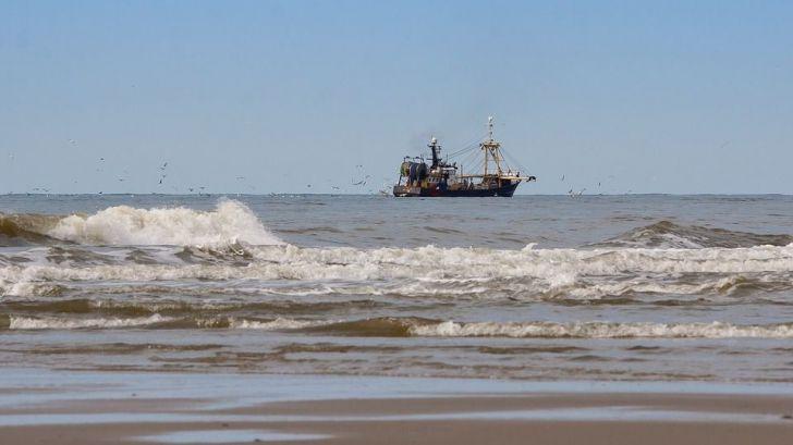 Los crímenes en la pesca representan un peligro para los ecosistemas