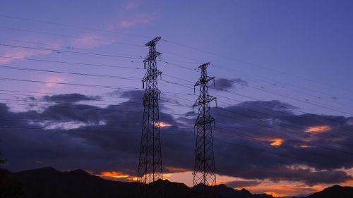 ¿Cómo pueden las redes eléctricas potenciar la biodiversidad?