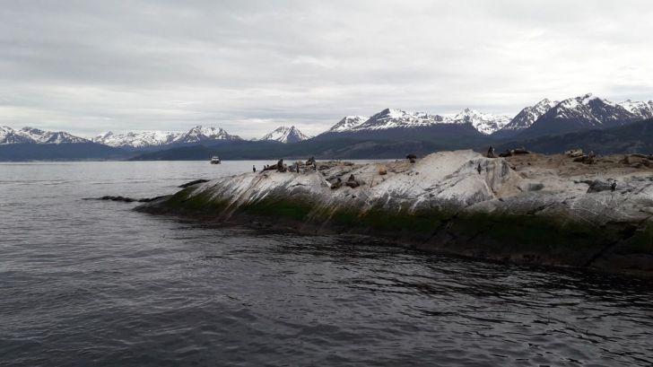 Argentina y Chile avanzan en el estudio del cambio climático en el Canal Beagle