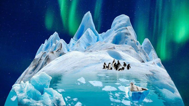 Efectos en el fitoplancton ante el aumento de la temperatura en la Antártida