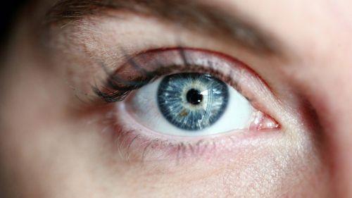 Un ingenioso tratamiento con biomembranas con células madre para tratar trastornos oculares