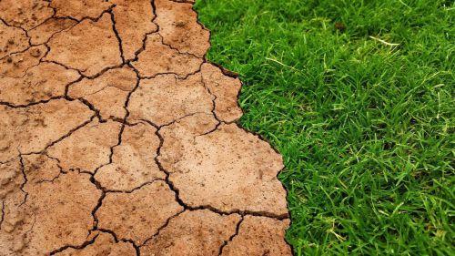 Greenpeace recuerda al Gobierno que la ley de cambio climático aprobada no responde a la emergencia climática