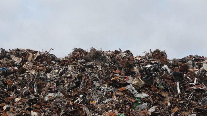 ¿Qué es 'Cuidad el Medio Ambiente hoy'?