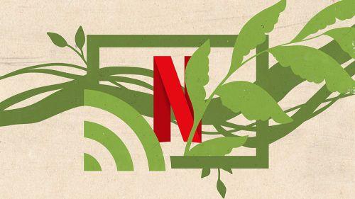 El verdadero impacto medioambiental del streaming