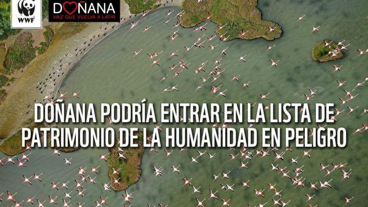La Unesco vigila Doñana ante las graves amenazas a este espacio Patrimonio de la Humanidad