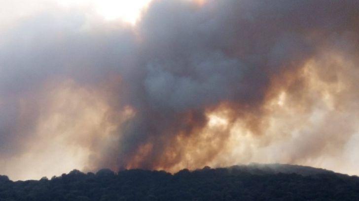 La grave situación de los incendios forestales en Grecia y Turquía podría darse en España