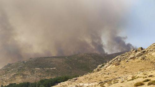 Los espacios afectados por incendios forestales deben contemplar un plan de restauración integral y participativo