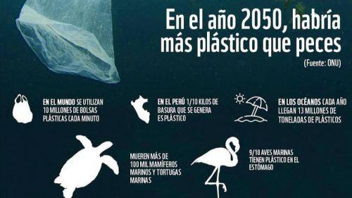 El verdadero coste de producir plástico: Diez veces superior al precio de mercado de este producto