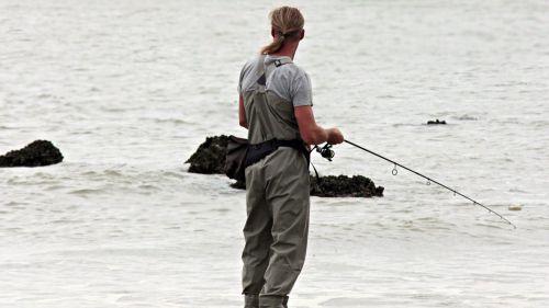 Las organizaciones ambientales demandan una ley de pesca eficaz ante la crisis ecológica
