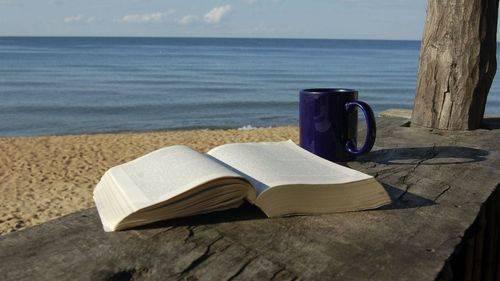 Los libros imprescindibles para este verano