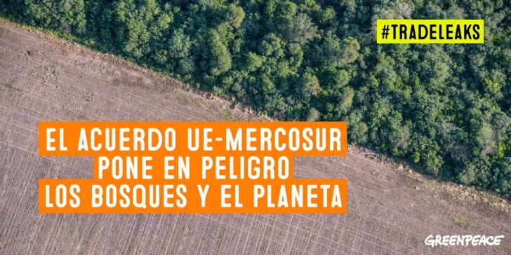 Greenpeace alerta de que la negociación comercial entre la UE y Mercosur ignora la emergencia climática